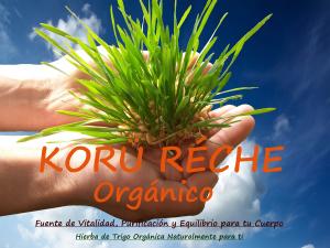 logo KORU RECHE MANOS